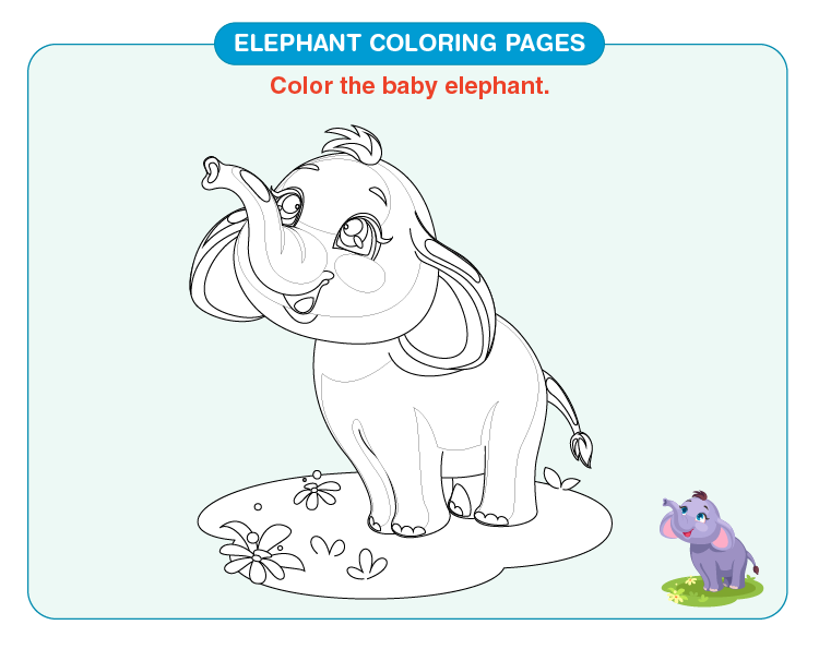 Color the baby elephant: Free elephant coloring pages for kids