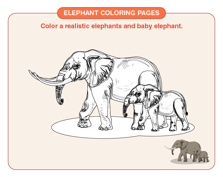 Color the mother and the baby elephant: Printable elephant coloring pages for kids