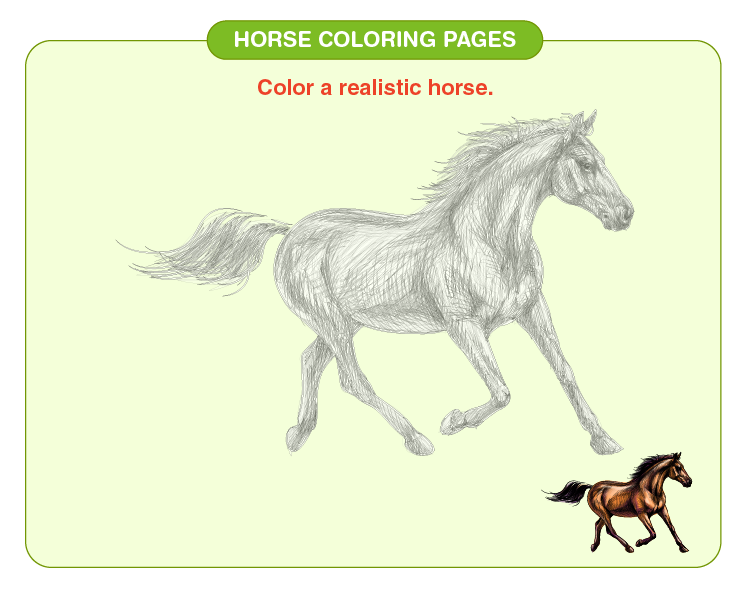 Color the horse: Horse coloring pages for kids