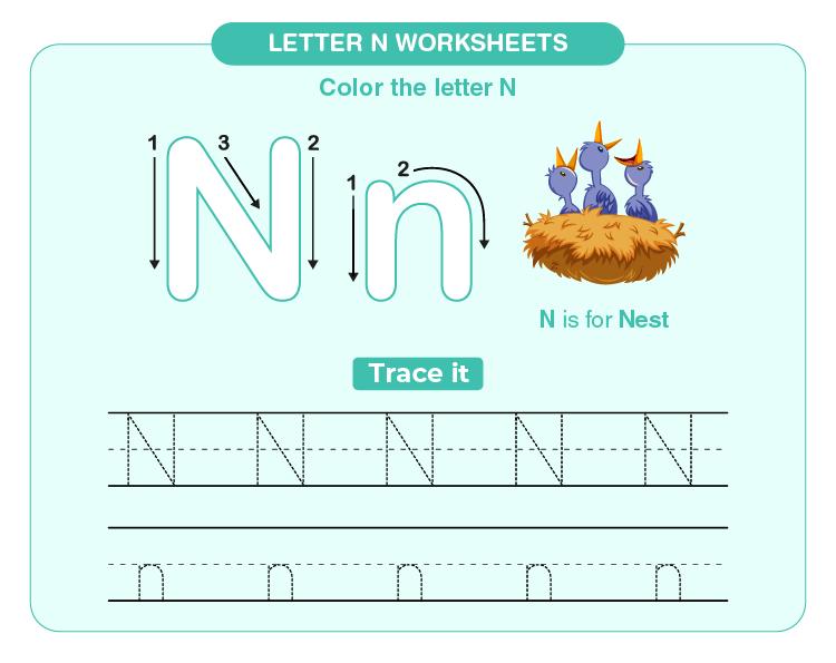 Write and color letter N on the worksheet: Letter N worksheets for kids