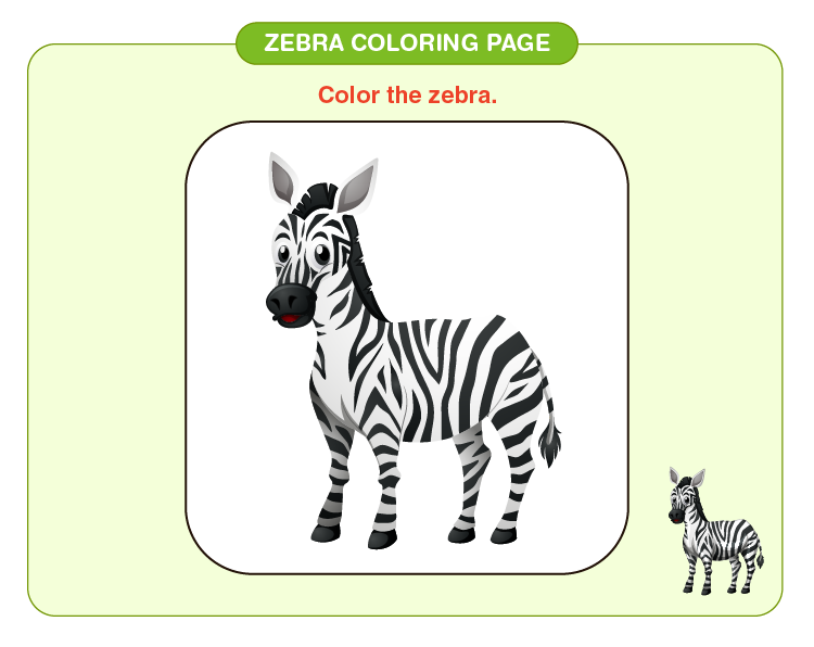 Color the zebra: Free zebra coloring pages for kids
