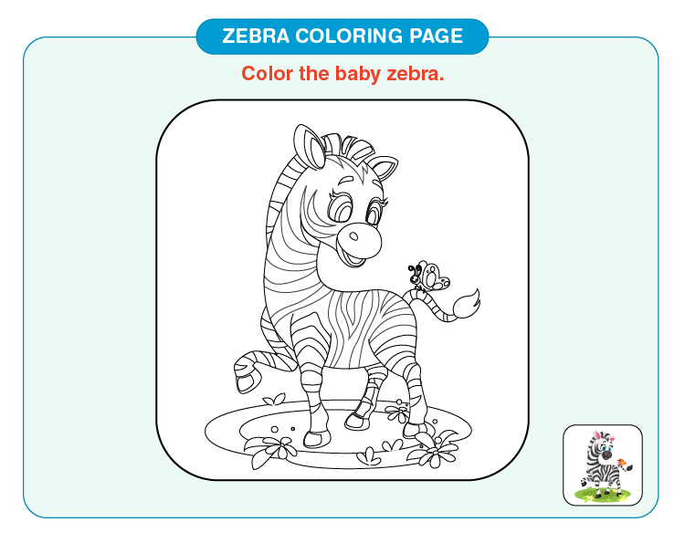 Color the baby zebra: Printable zebra coloring pages for kids
