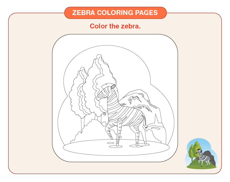 Color the zebra: Zebra coloring pages for kids